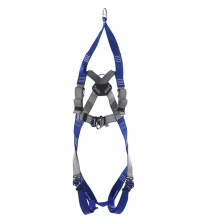 Two point rescue harness